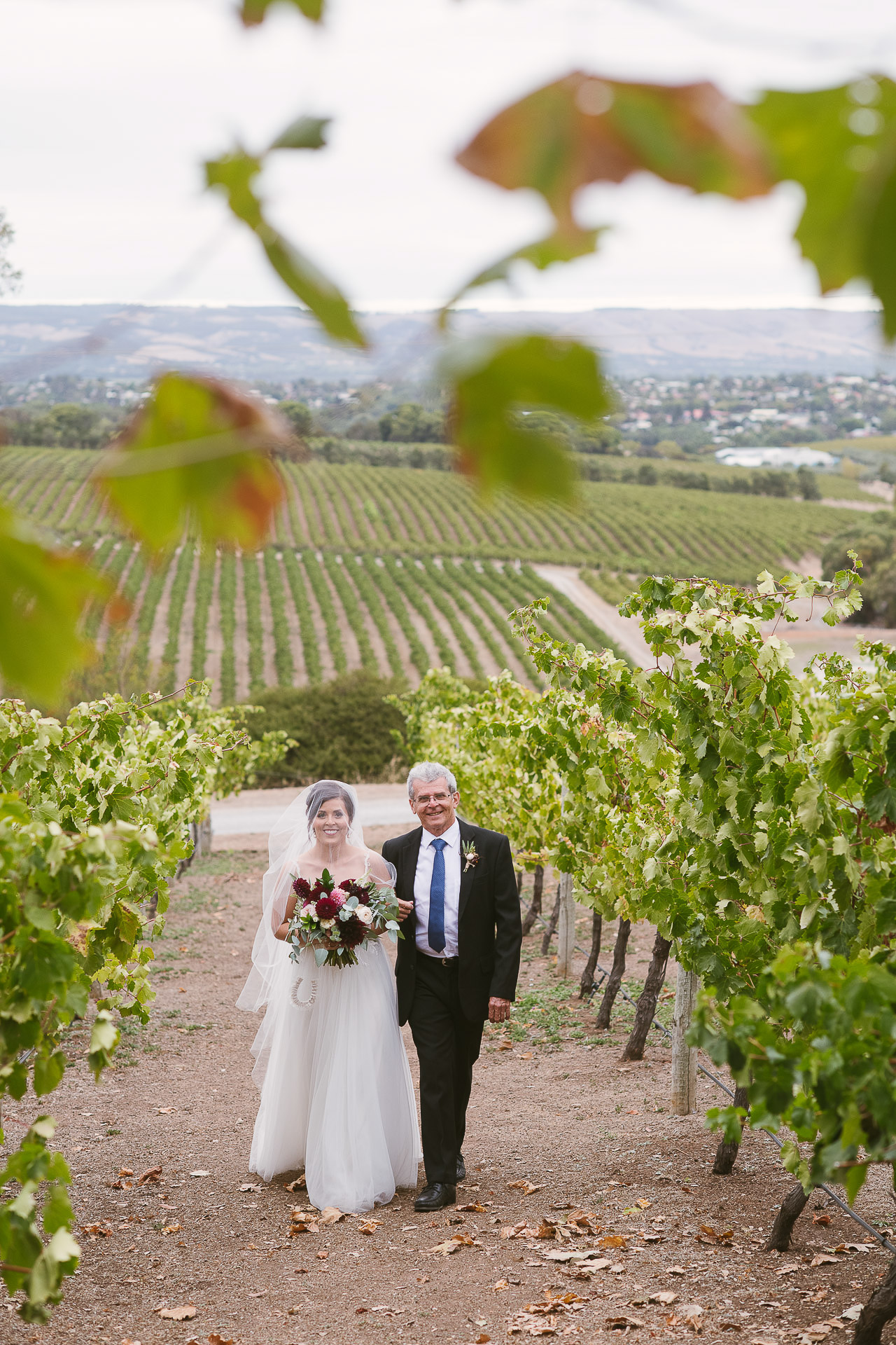 bride and father arrive between the vines at beach road wines wedding