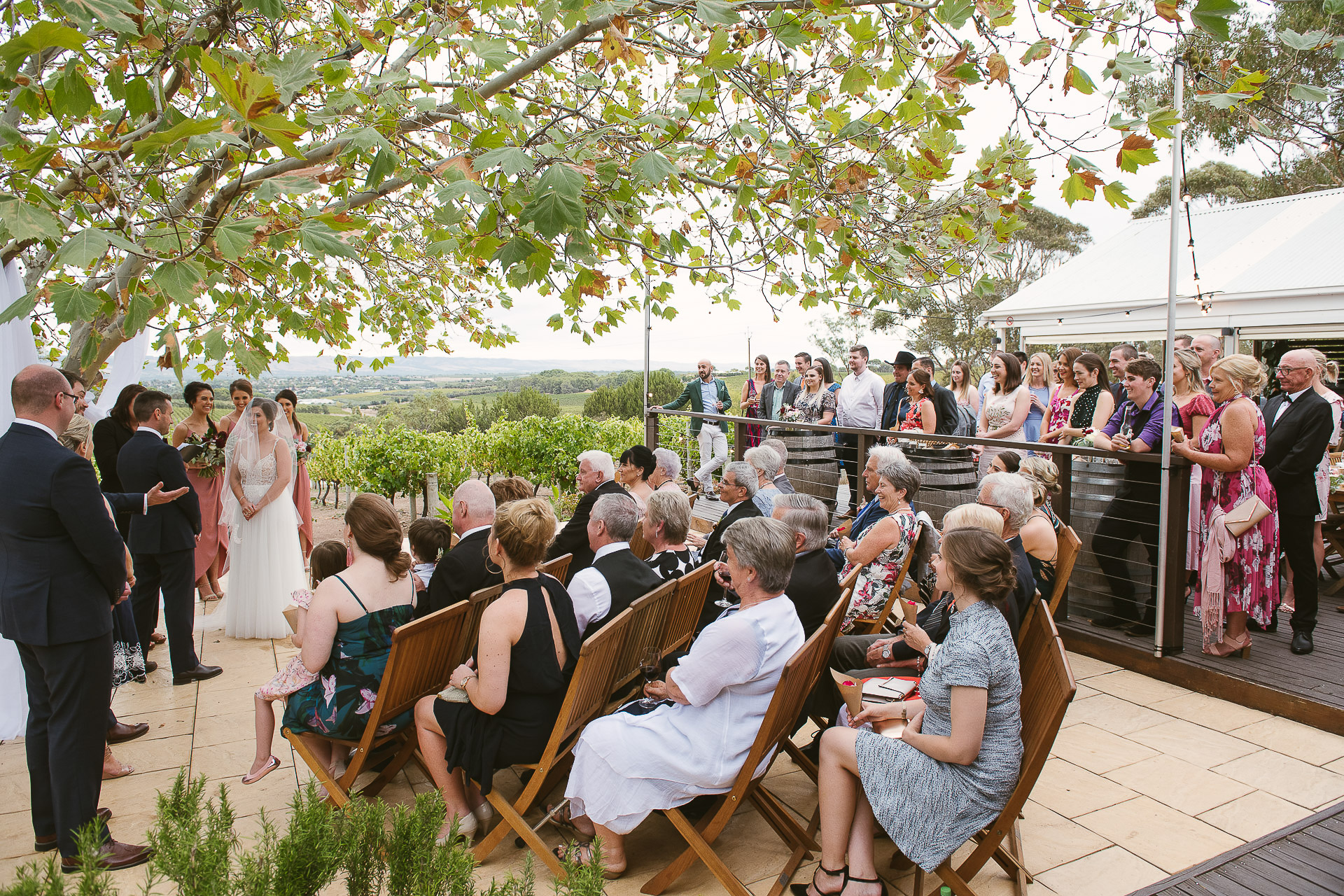 wedding ceremony underway under the maple tree at beach road wines wedding