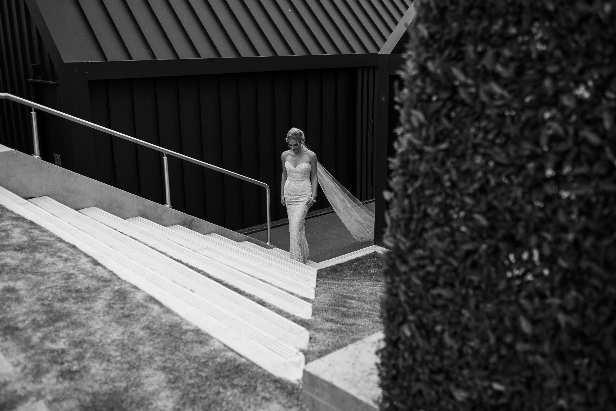 McLarenvale-wedding-photographer